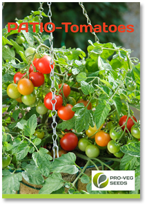 PATIO Tomatoes Brochure Euro Version